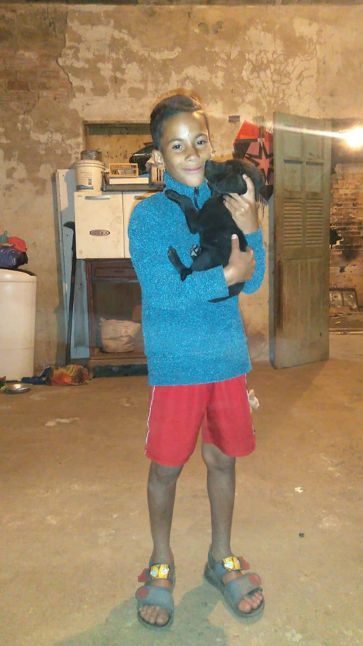 Menino de 11 anos ia construir casa para cachorro quando laje desabou