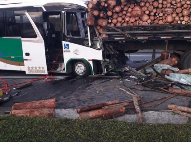 ônibus caminhão e madeiras