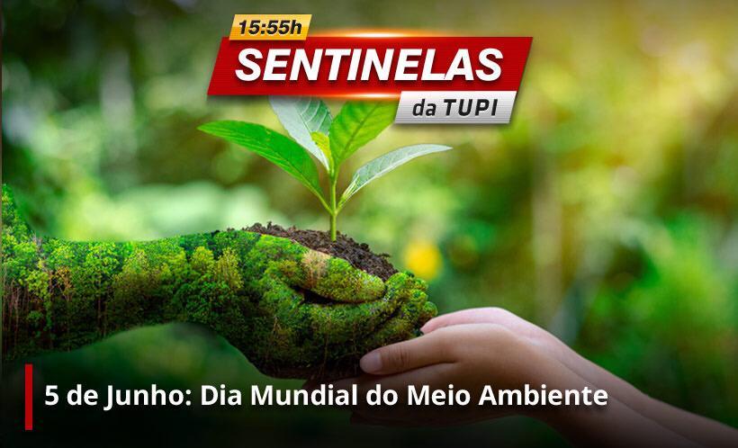 Amanhã é o Dia Mundial do Meio ambiente Sentinelas da Tupi (Foto: Erika Corrêa/ Divulgação: Super Rádio Tupi)