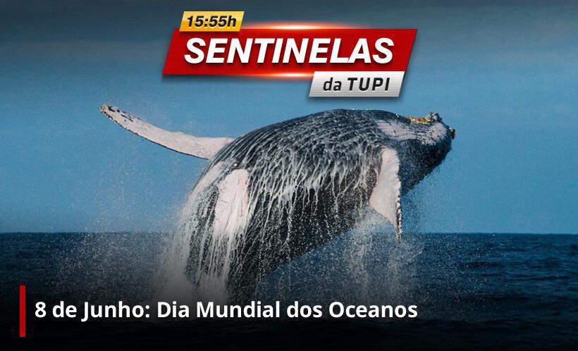 Dia Mundial dos Oceanos (Foto: Erika Corrêa/ Divulgação: Super Rádio Tupi)