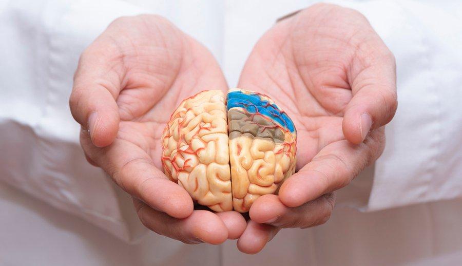 Novidade no tratamento contra Alzheimer: 'O medicamento oferta esperança' (DIvulgação)