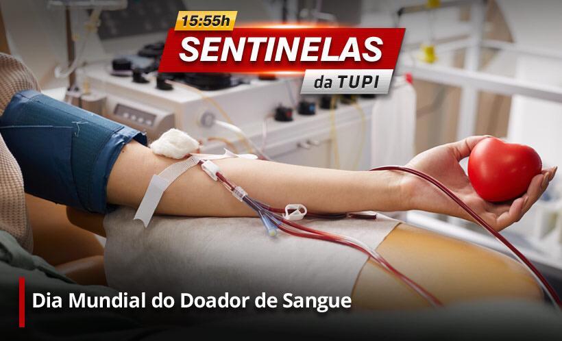 Hoje é o dia Mundial do Doador de Sangue (Divulgação)