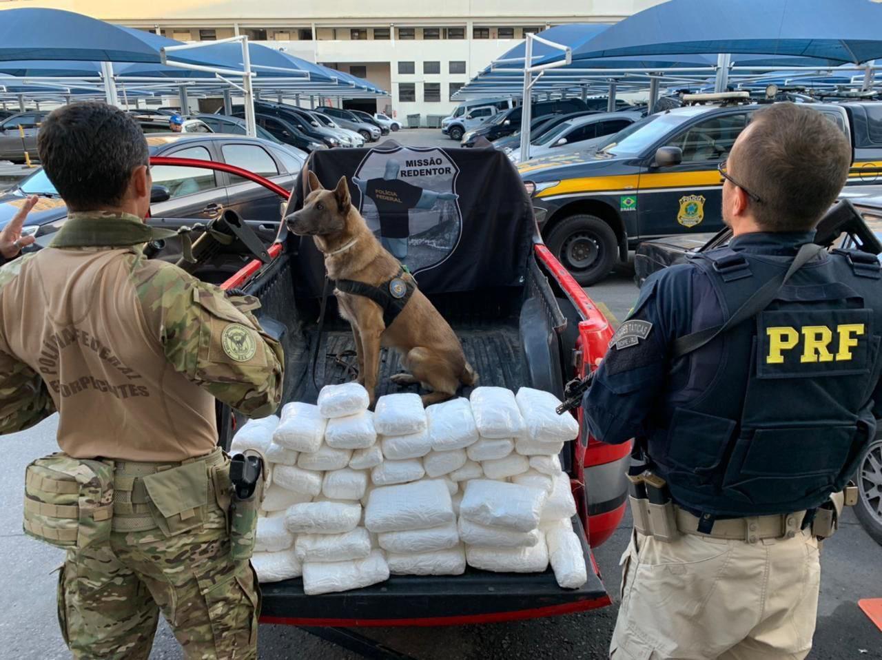 Imagem de drogas apreendidas pela polícia
