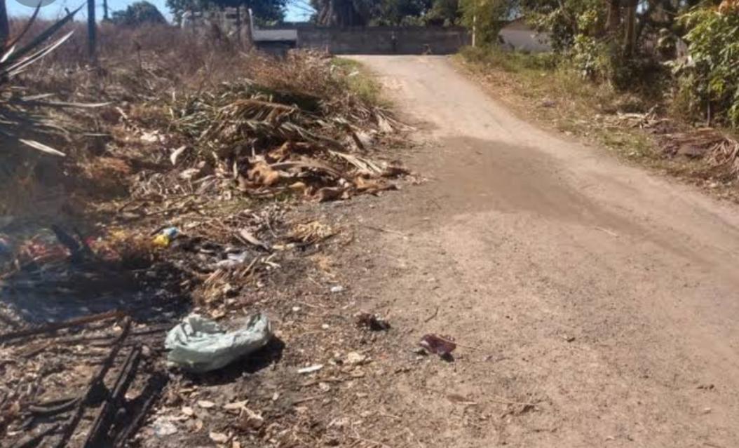 Local onde o corpo da criança morta pela mãe foi localizado