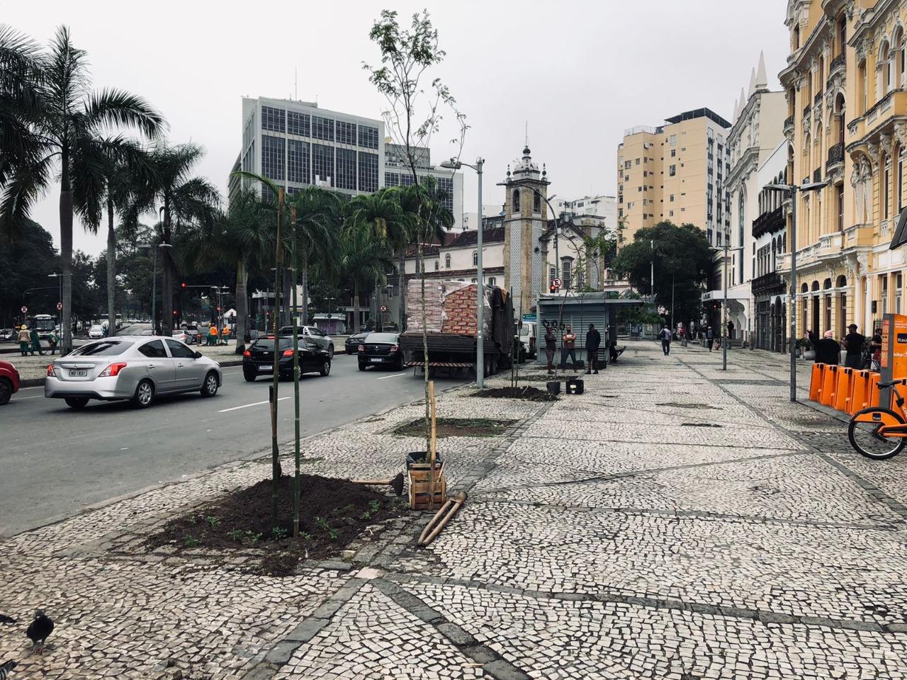 Plantação do Pau-Brasil em frente à sede do Centro de Teatro do Oprimido, na Av. Mem de Sá