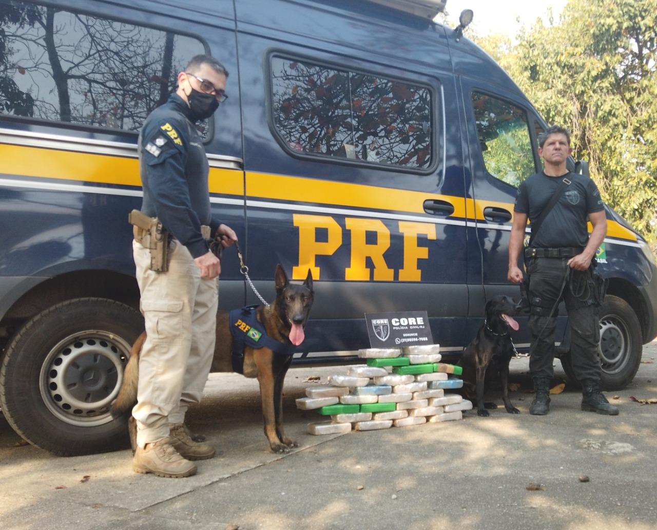 Imagem de dois policiais, um cachorro e drogas apreendidas