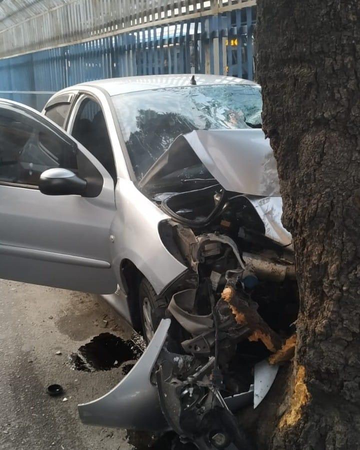 Carro atingiu árvore