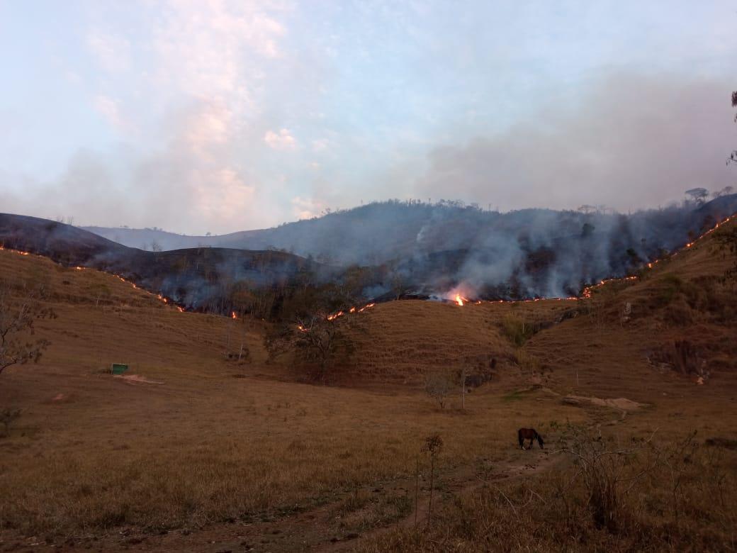imagem de um incêndio em vegetação