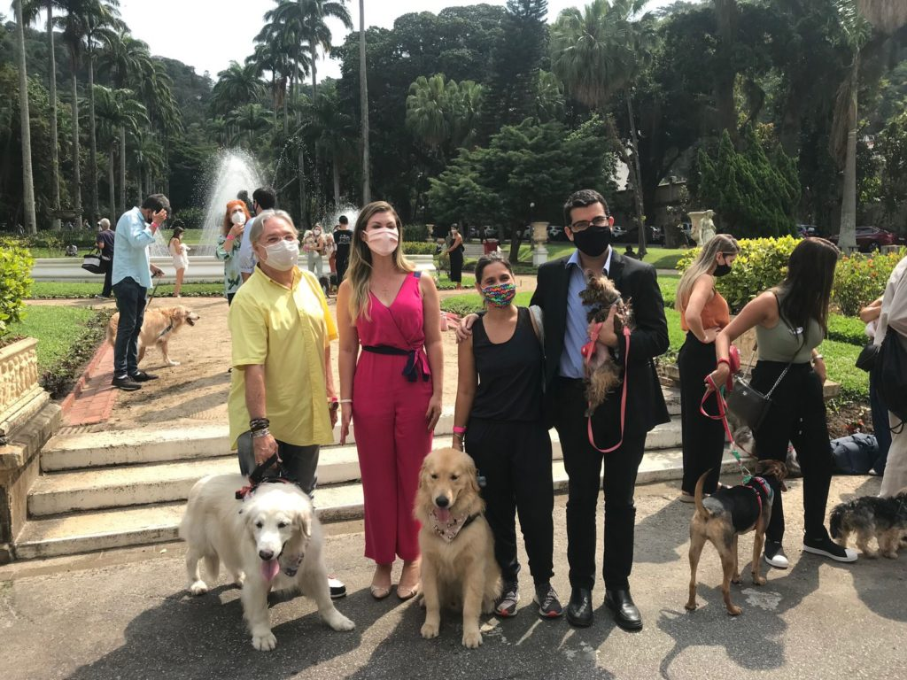 Imagens de cachorros no Palácio Guanabara
