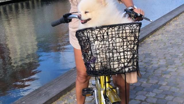 Ana Paula Evangelista exibe passeio de bike na Europa (Divulgação)