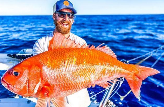 peixe austrália