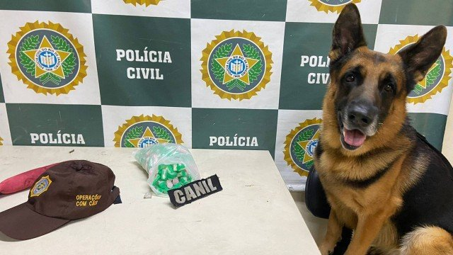 Cão farejador encontrou a droga durante um treinamento na Quinta da Boa Vista